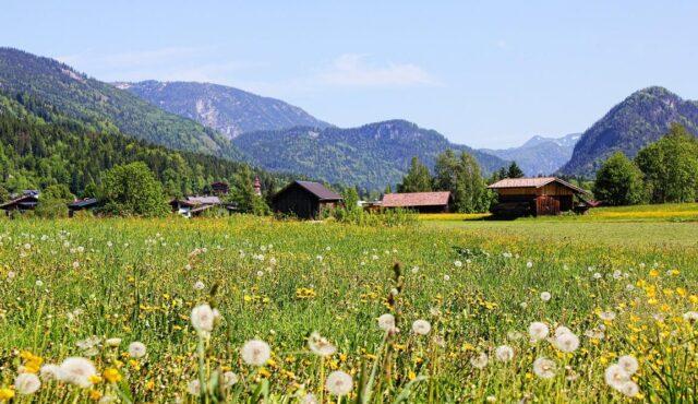 Sommerurlaub in den Salzburger Bergen 01.08.-05.08.2021